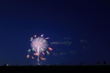 Jejak ekor kembang api dari awal peluncuran. Lokasi: Oiden Hanabi Taikai Toyota.
